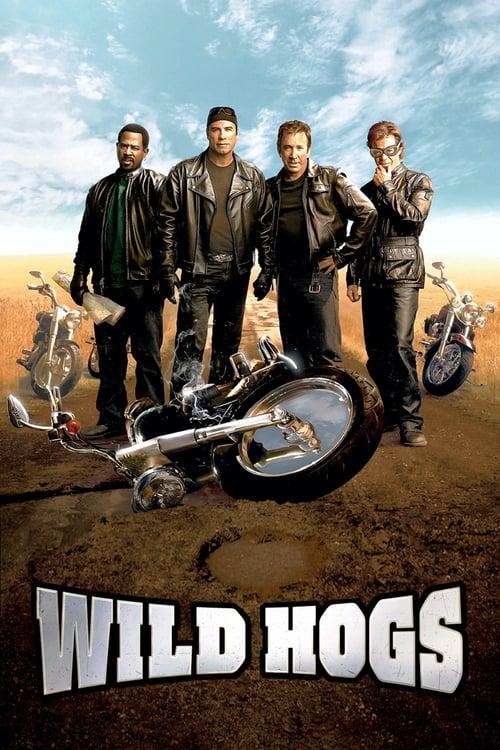 Download Wild Hogs (2007) Movie Free Online