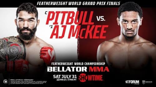 Bellator 263: Pitbull vs. McKee Series for Free Online