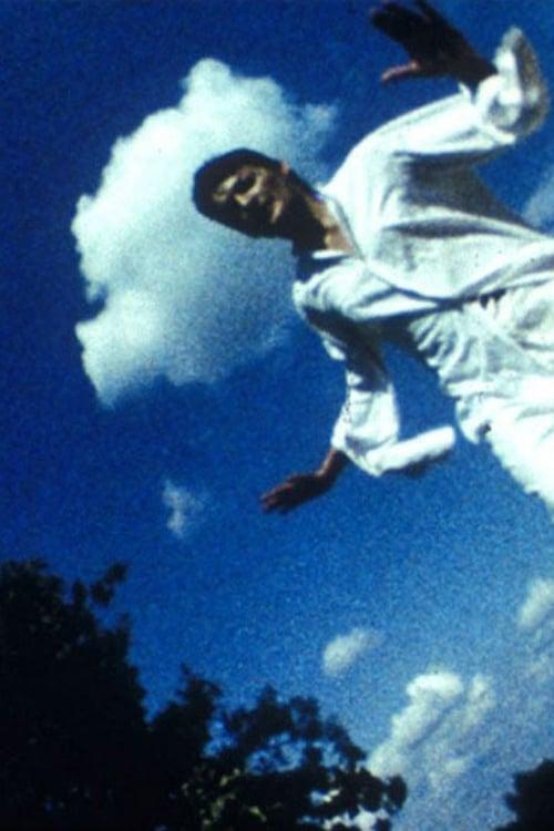 Falling. Desert. Syn (1985)