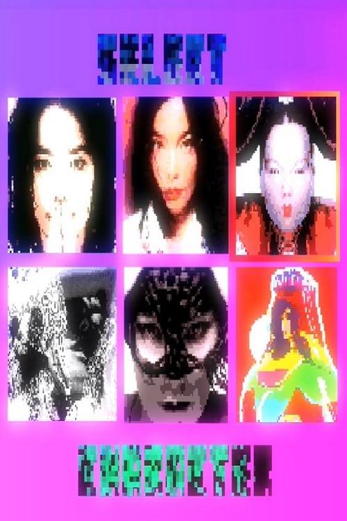 Work in Progress by Björk poster