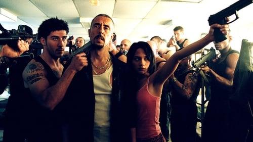 Os Gangs do Bairro 13