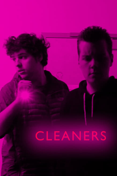 Cleaners (HDRip)