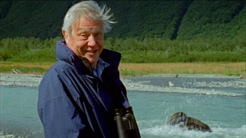 Nature 2013 720p Extended: Season 31 – Episode Attenborough's Life Stories: Part One - Life on Camera