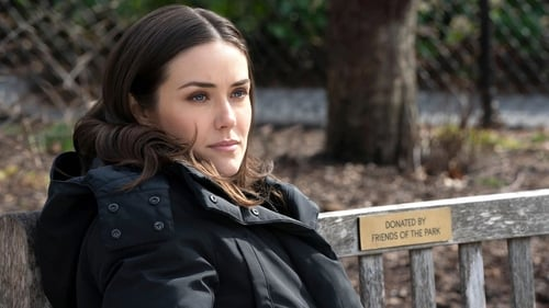 Assistir The Blacklist S07E16 – 7×16 – Dublado