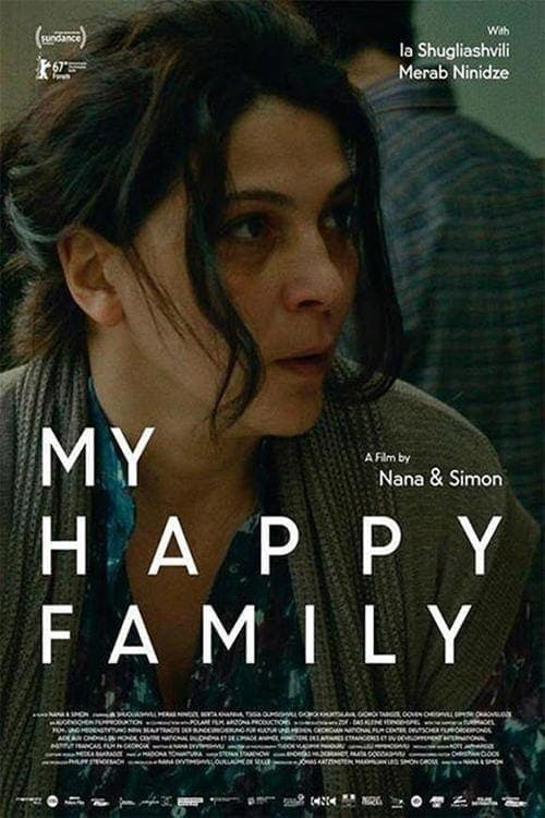 Largescale poster for My Happy Family