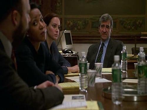 Law & Order: Season 11 – Episod Teenage Wasteland