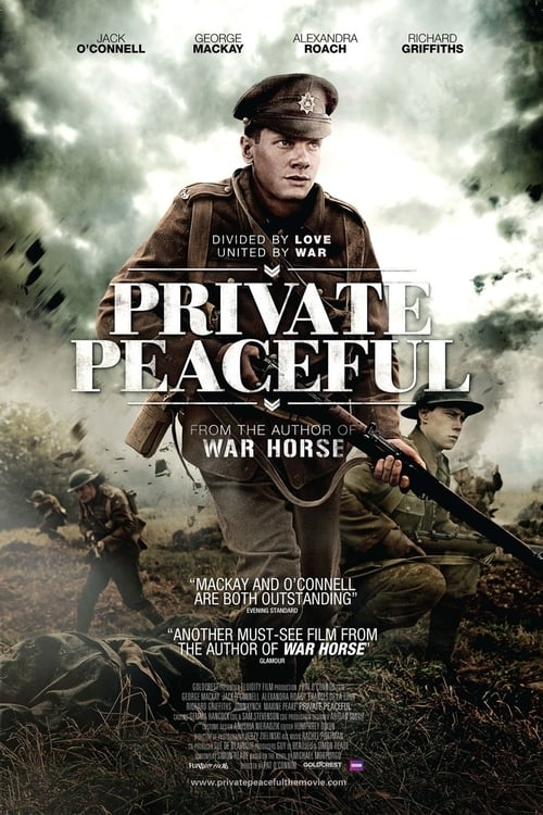 Largescale poster for Private Peaceful