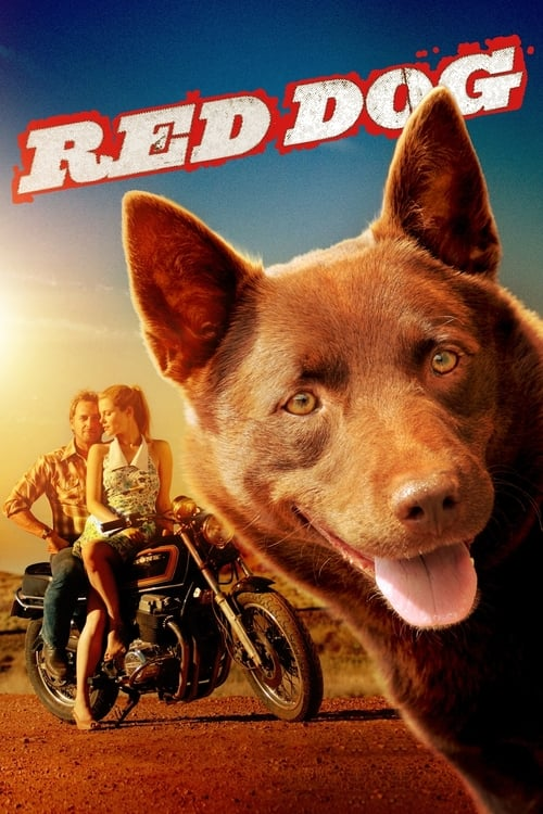 Red Dog - Poster