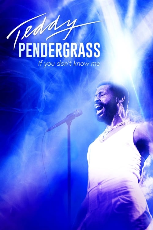 Largescale poster for Teddy Pendergrass: If You Don't Know Me