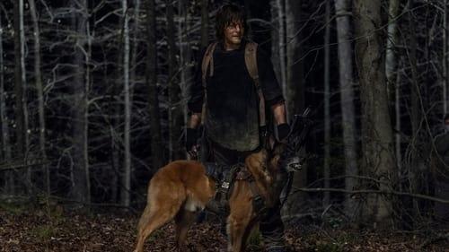 The Walking Dead - Season 11 - Episode 4: Rendition