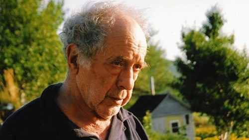 Watch Leaving Home, Coming Home: A Portrait of Robert Frank, the full movie online for free
