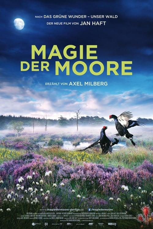 Poster von Magie der Moore