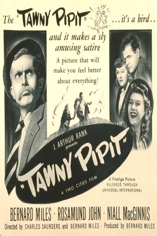 Tawny Pipit 1944