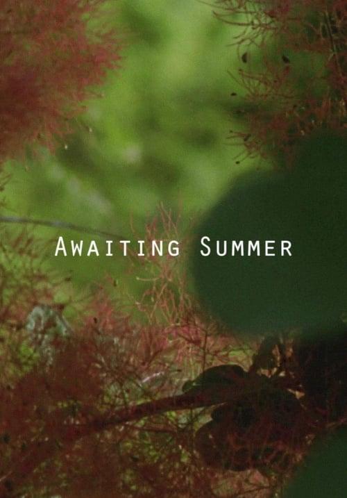 Awaiting Summer (2016)