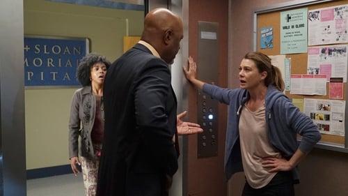 Grey's Anatomy - Season 13 - Episode 1: Undo