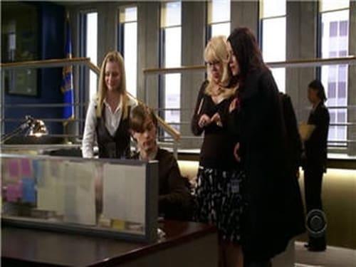 Criminal Minds: Season 2 – Episod Profiler, Profiled
