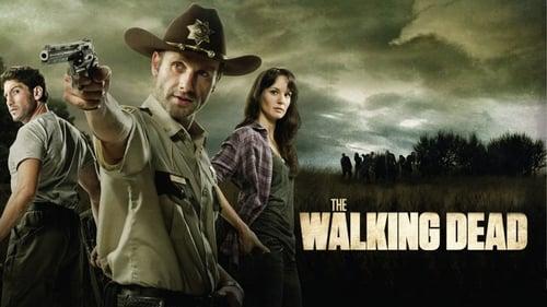 The Walking Dead - Season 11 - episode 9