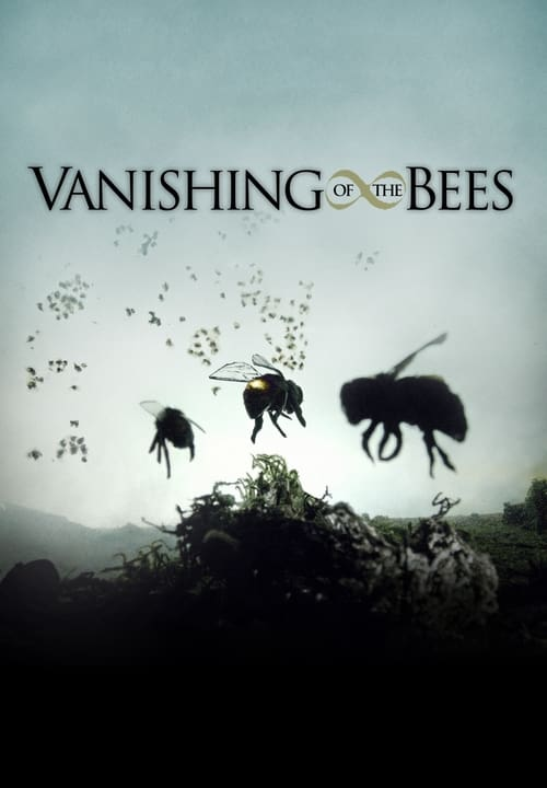 Image Vanishing of the Bees