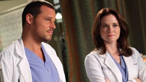 Grey's Anatomy - Season 7 - Episode 8: Something's Gotta Give