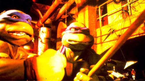 Teenage Mutant Ninja Turtles (1990) Subtitle Indonesia