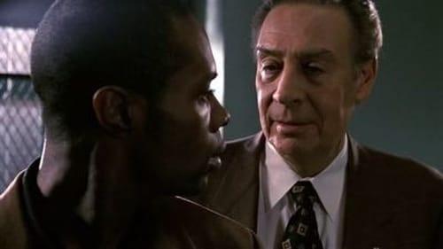 Law & Order: Season 10 – Épisode Black, White and Blue