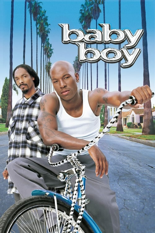 The poster of Baby Boy