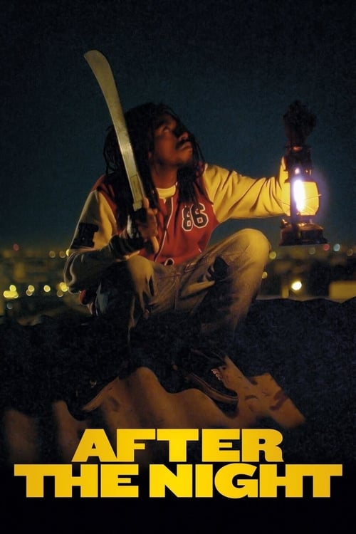 Largescale poster for After the Light