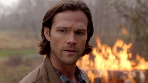supernatural - Season 10 - Episode 22: The Prisoner