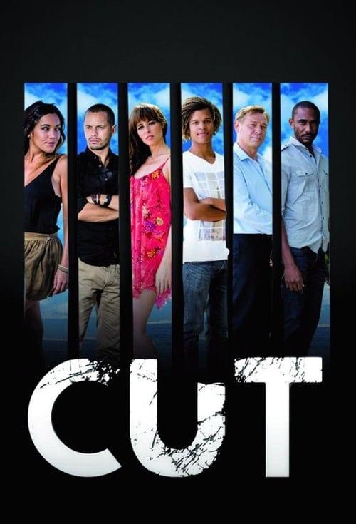 Cut (2013)