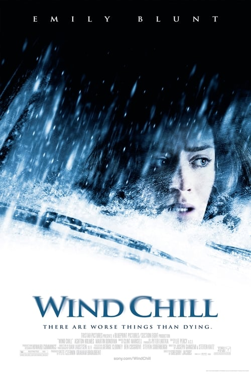 Wind Chill (2007)