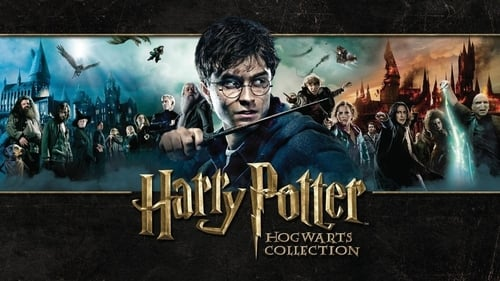 HARRY POTTER AND THE SORCERER'S STONE – SUBTITLE INDONESIA