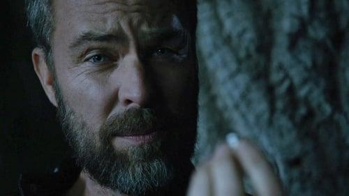 Assistir Teen Wolf S06E12 – 6×12 – Legendado