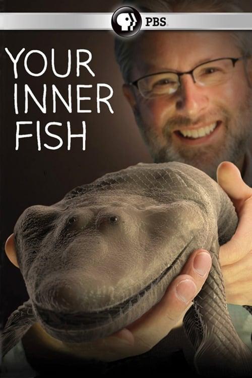 Mira La Película Your Inner Fish En Buena Calidad Gratis