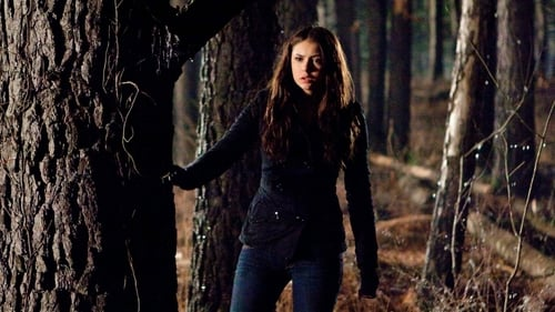 The Vampire Diaries - Season 1 - Episode 17: Let the Right One In