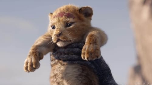 Watch The Lion King Online Collider