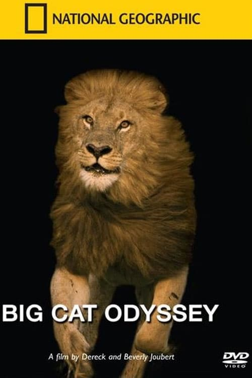 Filme Big Cat Odyssey Com Legendas