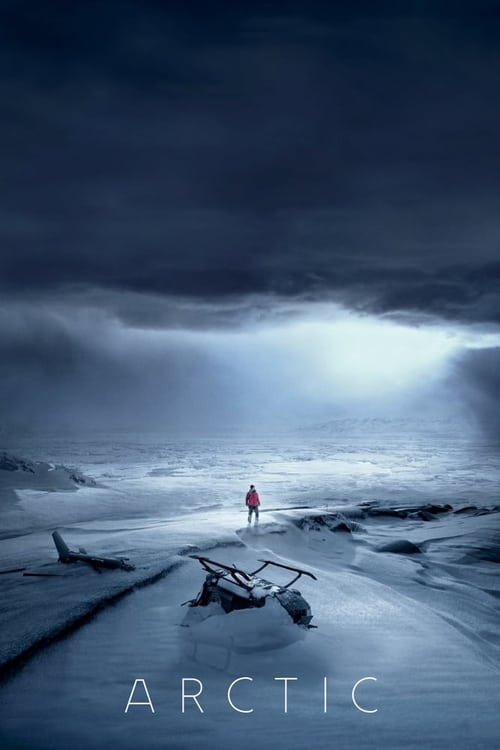 Download Arctic (2018) Movie Free Online