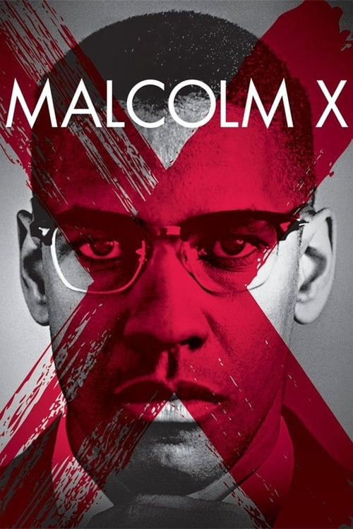 Malcolm X - Poster