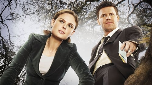 Assistir Bones – Todas as Temporadas – Dublado / Legendado Online