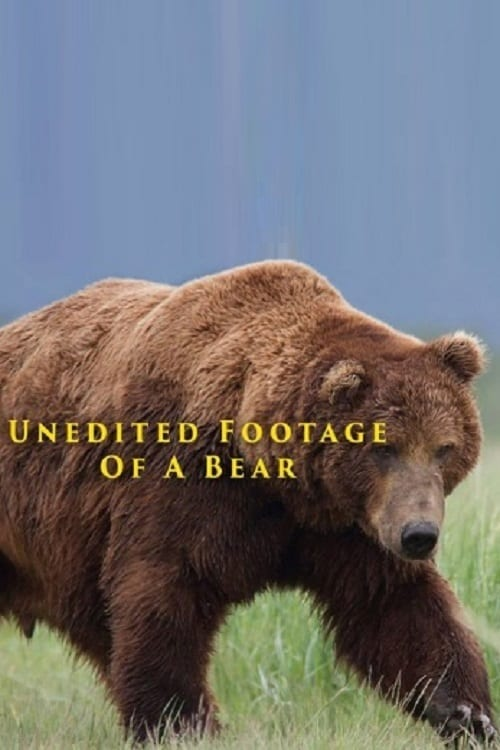 Unedited Footage of a Bear (2014) Poster