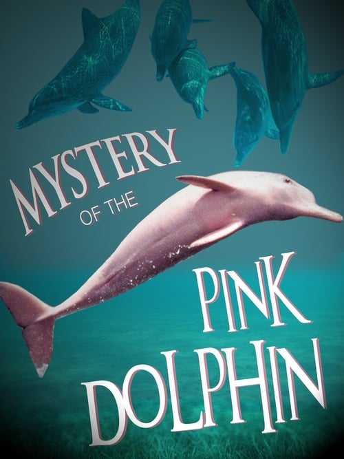 The Mystery of the Pink Dolphin ( The Mystery of the Pink Dolphin )