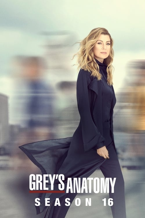 Grey X27 S Anatomy: Season 16