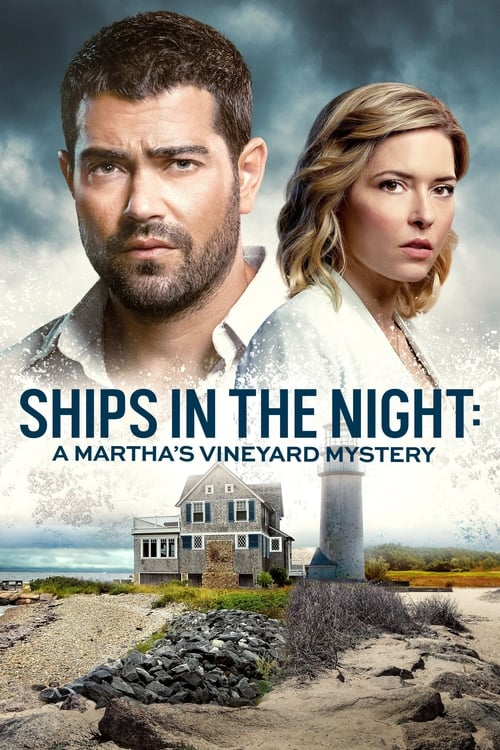 Ships in the Night: A Martha's Vineyard Mystery The link