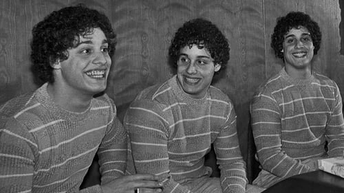 Streaming Online Three Identical Strangers