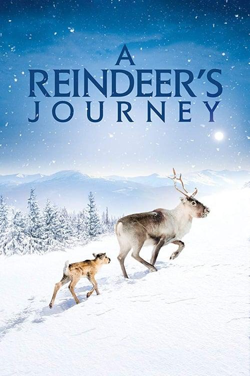 A Reindeer's Journey (2018) Poster