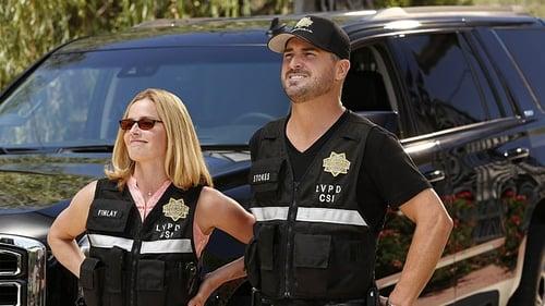 Assistir CSI: Investigação Criminal S15E07 – 15×07 – Dublado