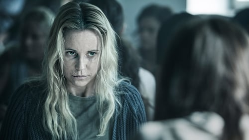 Assistir The Bridge S04E01 – 4×01 – Legendado