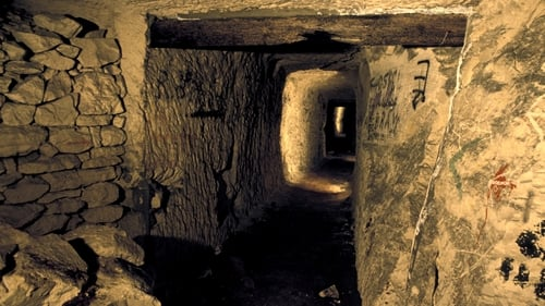 NOVA: Season 43 – Episode Secret Tunnel Warfare