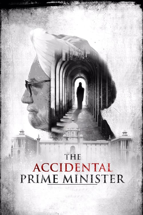 Mira The Accidental Prime Minister Gratis En Línea