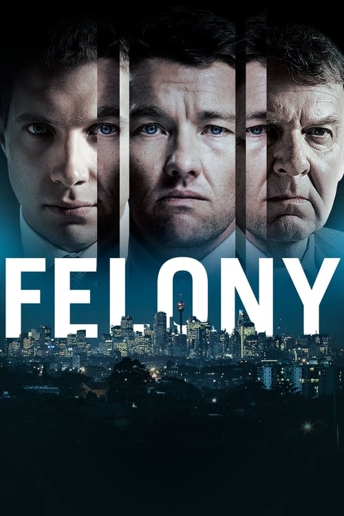 Largescale poster for Felony